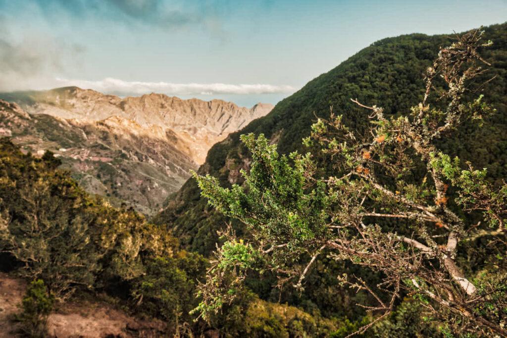 Fotos von einem Paar fotografiert Deutscher Fotograf Ela & Chris beim Fotoshooting auf Teneriffa in Anaga Gebirge an der Playa de Benijo im David Hamilton Blur